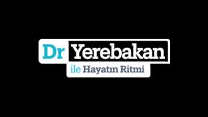 dryerebakan.com